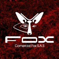Empresas comercial fox Laitjaus innovación consultores design thinking crecimiento empresarial asesoría networking proyectos 01