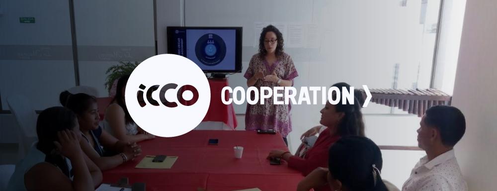 ICCO instituciones Laitjaus innovación consultores design thinking crecimiento empresarial asesoría networking proyectos-01