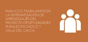 ICCO instituciones Laitjaus innovación consultores design thinking crecimiento empresarial asesoría networking proyectos-03